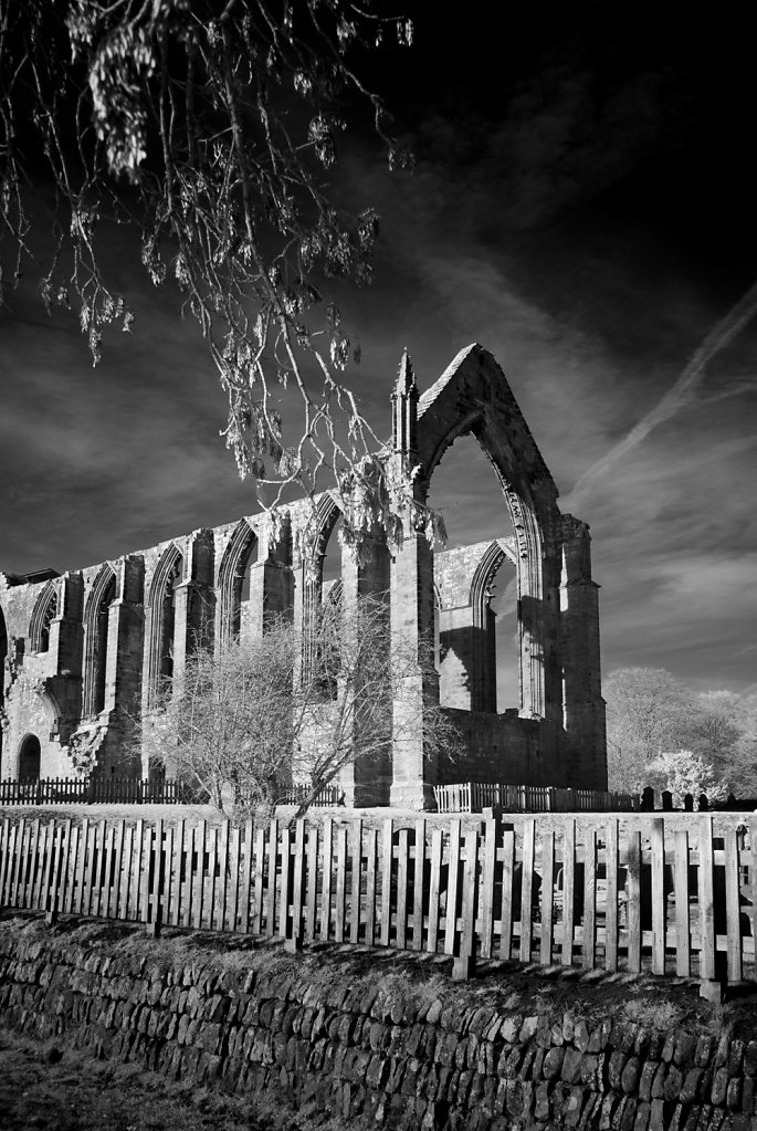 Bolton-Abbey-Nirkon-7436.jpg